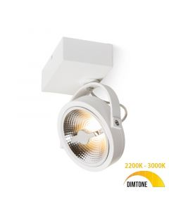 Design spot / Plafondspot Yanara Mat Wit Draaibaar en Kantelbaar - AR111 incl. Lichtbron - 12W Dimtone 3000K - 2200K