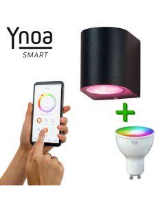 Ynoa Smart buitenset - 1 x Armatuur Valence + GU10 spot RGBW