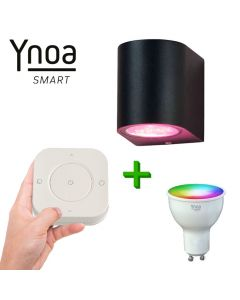 Ynoa Smart buitenset - 1 x Armatuur Valence + GU10 spot RGBW + 5-knops afstandsbediening